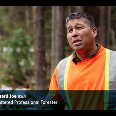 Gain a forestry career at UBC